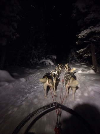 Kiruna Guidetur - Day Trips: photo0.jpg