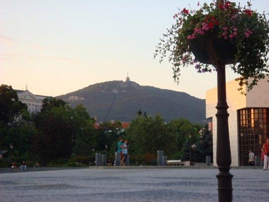 Nitra Photo