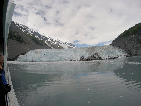 26 Glacier Cruise by Phillips Cruises and Tours: Glaciers appear Bluer on overcast days!