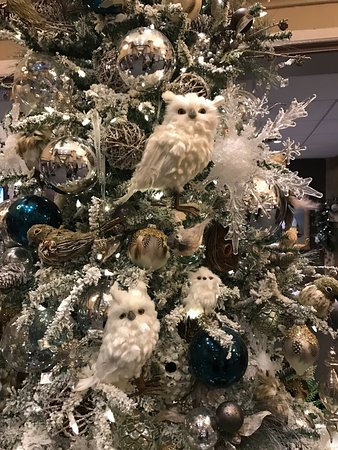 San Diego Hotels With Pretty Christmas Decorations 2020 White owls theme decoration on the christmas trees in the lobby