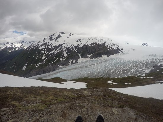 Harding Ice Field Trail: Looking at Exit Glacier from Above.