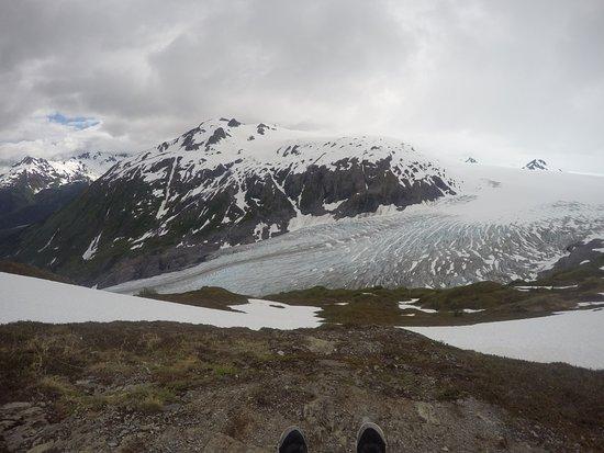 Kenai Fjords National Park, AK: Looking at Exit Glacier from Above.