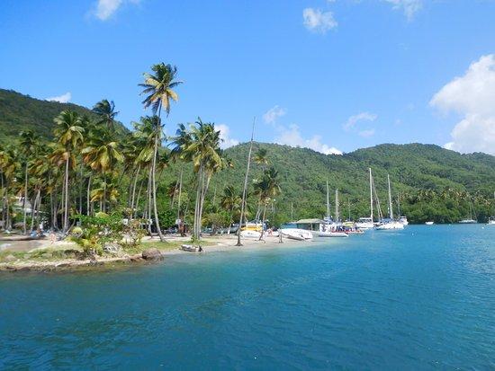 Excursions Passion Catamaran: Marigot bay