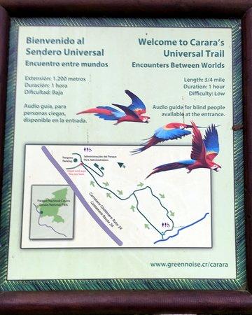Reserva Biologica Carara: info about the park