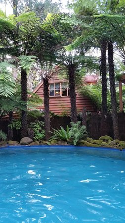 Cockatoo, Australia: view of cabin from pool.