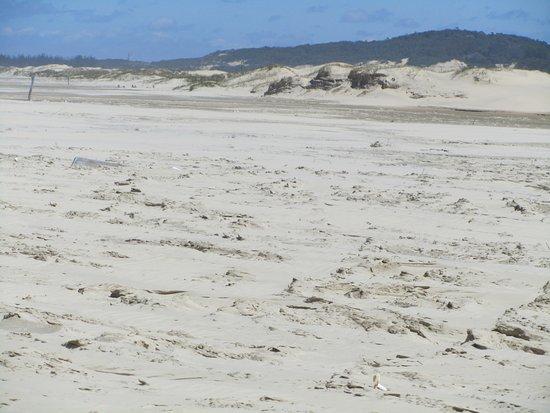 Praia da Itapeva: Deserta !