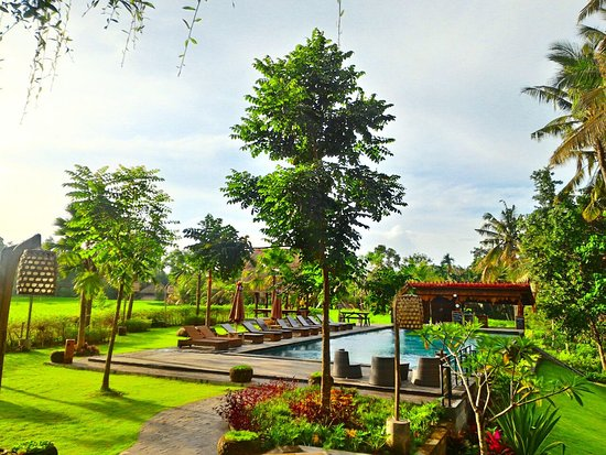 Artini Cottages 3 Hotel Bali