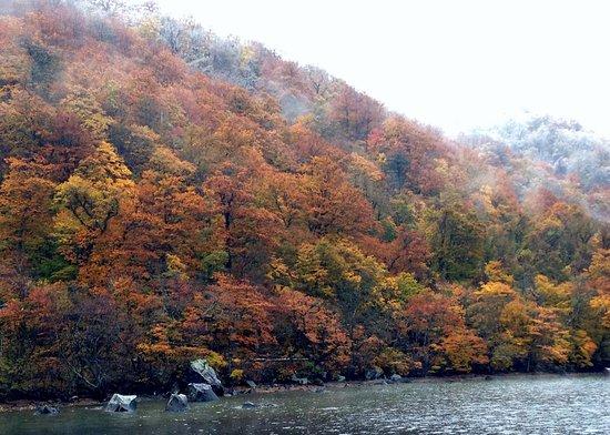 Lake Towada 十和田湖 5