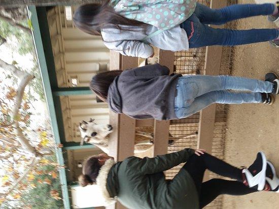 Orange County Zoo: 20170104_121635_large.jpg