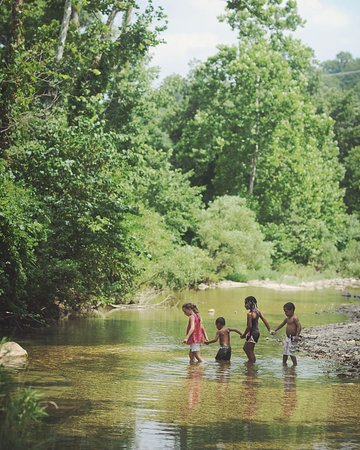 Branson West, MO: Our little ones loved exploring the grounds