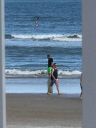 Ormond Beach: photo1.jpg