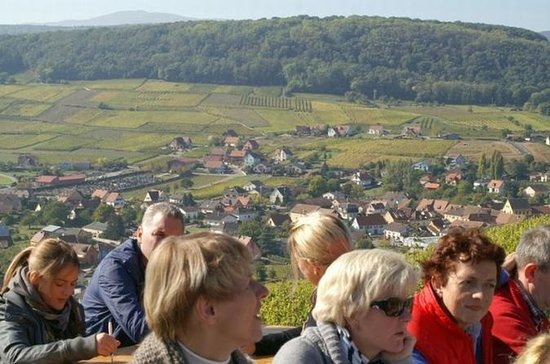 Alsace Villages and Wine Private Day...