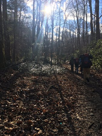 Great Smoky Mountains National Park, Carolina del Norte: dayhikes to mt cammerer & sterling