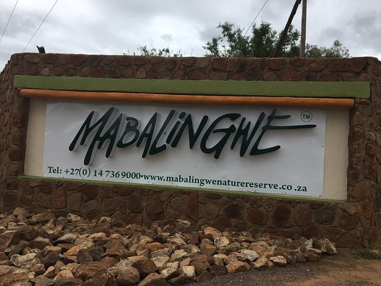 "Mabalingwe Nature Reserve: Braai facilities are available at all stands. You must visit Kalahari Oasis- a human ""wateringho"