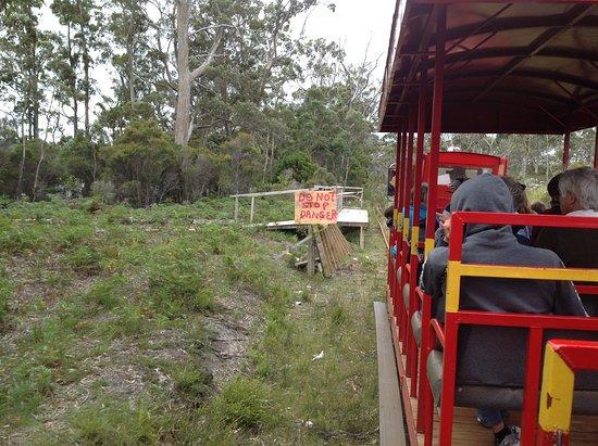 Tasmanien, Australien: The stop at the old cemetery still needs work