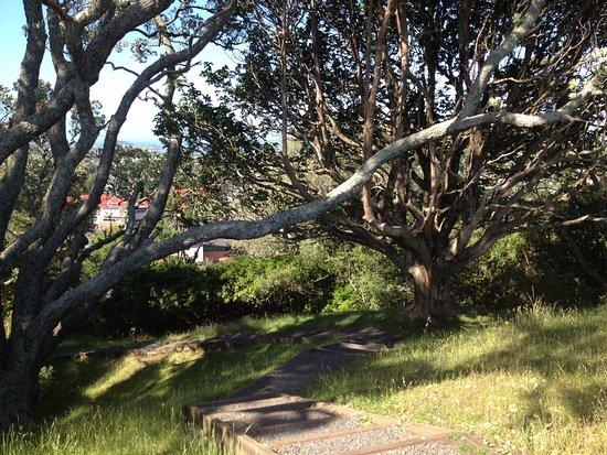 Epsom, นิวซีแลนด์: path1