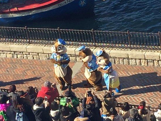 Tokyo DisneySea Hotel MiraCosta: よく見えたぁ~