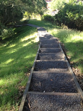 Epsom, New Zealand: path2