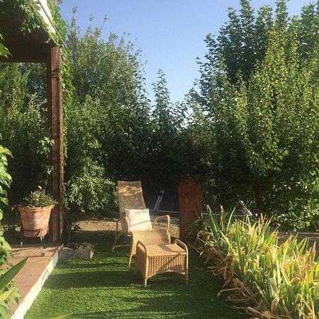 La Almunia del Valle: Ground floor room with terrace