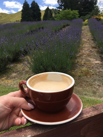 Taumarunui, New Zealand: photo1.jpg