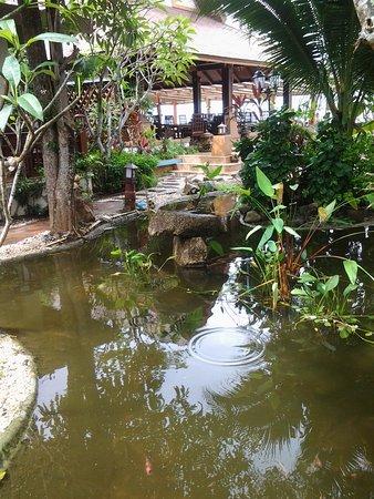 Lipa Noi, Tailandia: Accès au resraurant et aux maisons