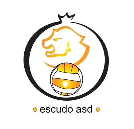 Escudo Volley