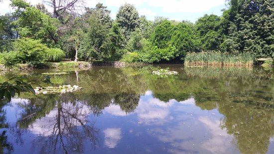Park Vrana : The lake with the lilies