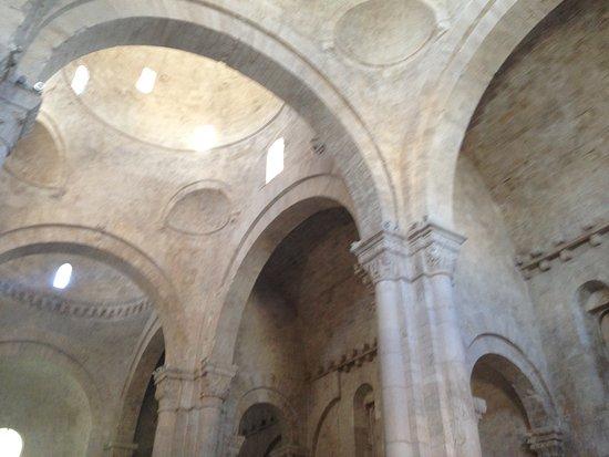 Duomo di Molfetta - Parrocchia San Corrado: Cupole viste dall'interno