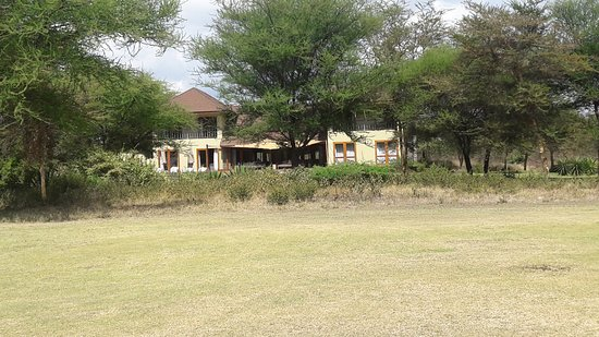 The Kilimanjaro Golf and Wildlife Estate: Kiligolf Lodge. Pool is hidden by the acacias