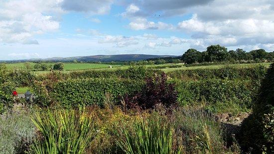 Cotehill Photo