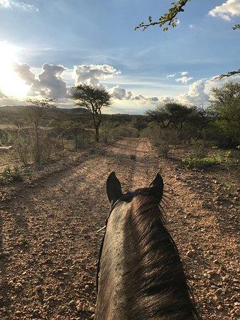 Equitrails Namibia