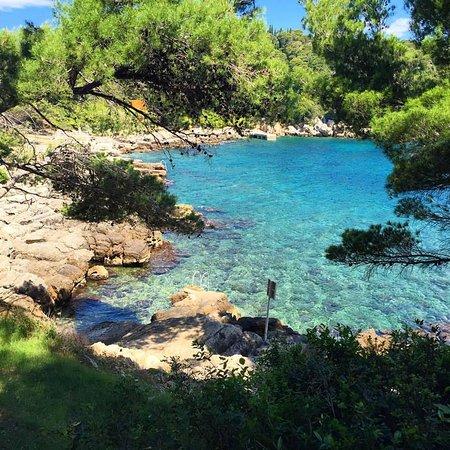 Island of Lokrum: Paraiso!