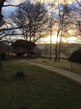 Buckerell, UK: The beautiful Tree House