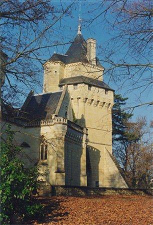 Château de Ternay, façade Est