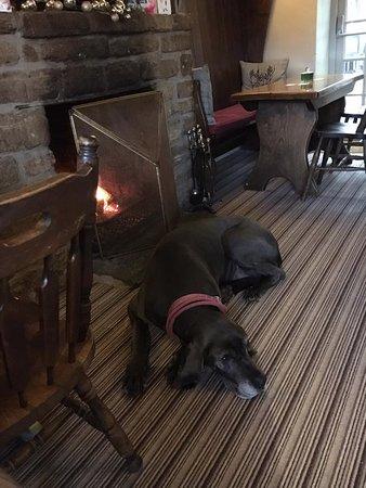 The Old Bear Inn: Someone felt at home.
