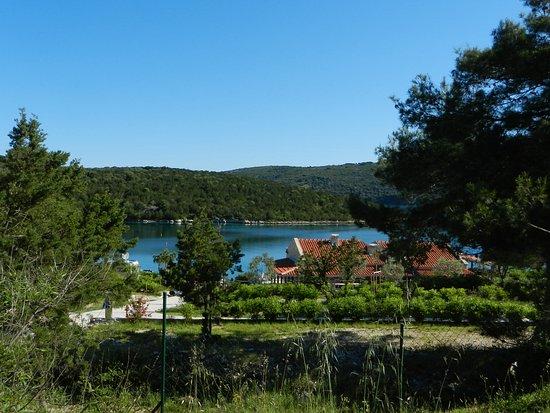 Dugi Island, Croatia: Camp Mandarino