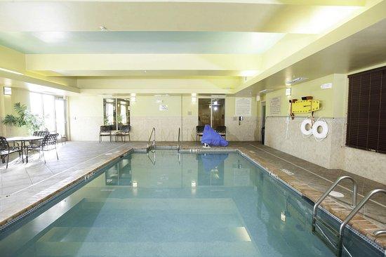 Hilton Garden Inn Evansville: Indoor Pool