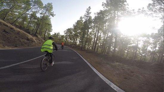 Mr. Bike