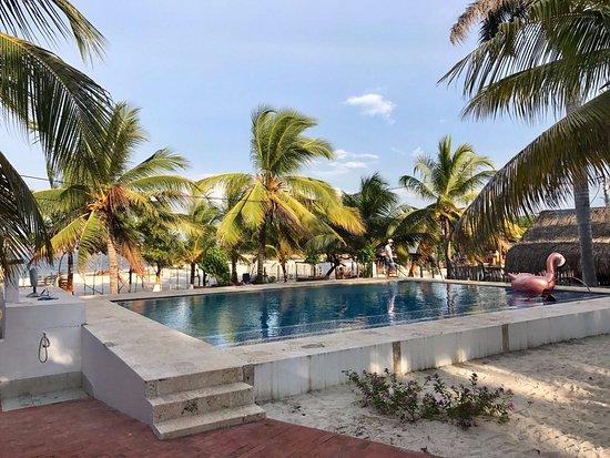 Fenix Beach Cartagena Restaurant Reviews Phone Number