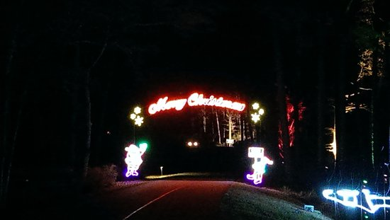Callaway Gardens Christmas Lights.Fantasy In Lights Picture Of Callaway Gardens Pine