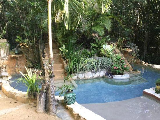 La Selva Mariposa: Private cenote to cool down in