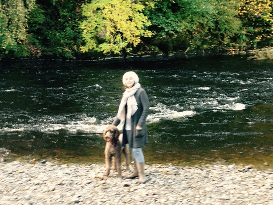 Builth Wells, UK: A dog walk in the grounds by the river