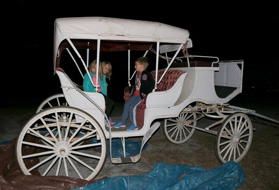 Dillard House: Night shot of the triplets on the carriage