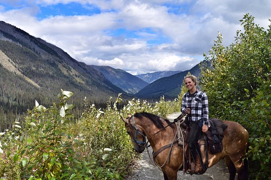 Pemberton, Canada: Gorgeous views and gorgeous buckskin Freddy