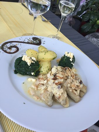 Aeschi, Schweiz: Fisch