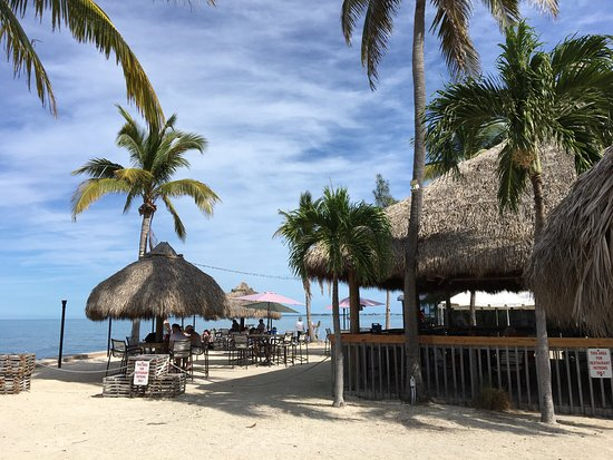 Long Key (Cayo Víbora), FL: Cool place to have a rest, grab some meal on the way to Key West. Ocean view, relaxing atmospher