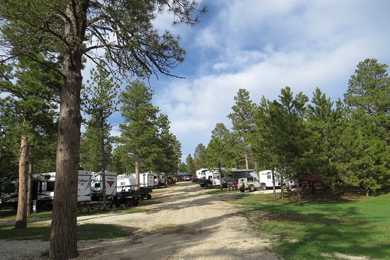 Mystic hills hideaway updated 2018 campground reviews for Cabins near deadwood sd