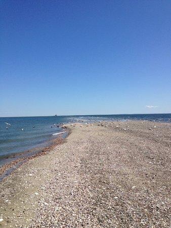 Jennings Beach Image