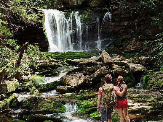 Davis, WV: Elekala Falls