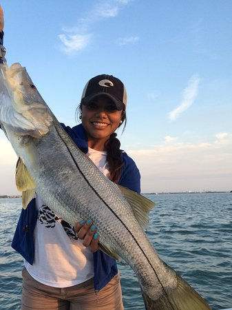 Clearwater inshore flats fishing charter palm harbor fl for Fishing charters clearwater fl